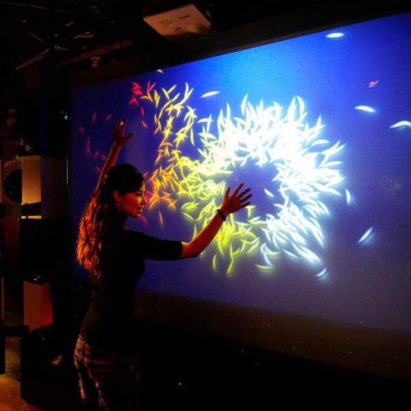 interactive accent rear projection film